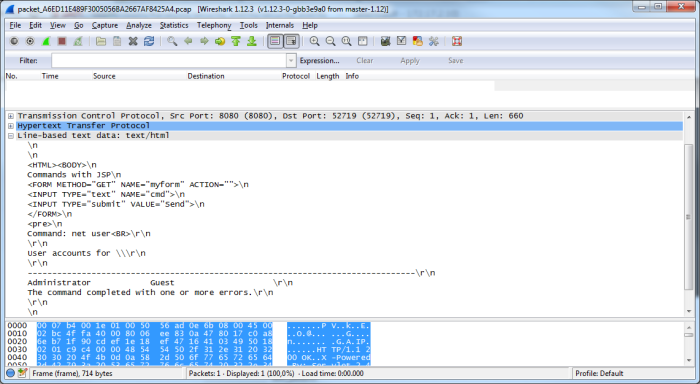 Вид перехваченного пакета в Wireshark